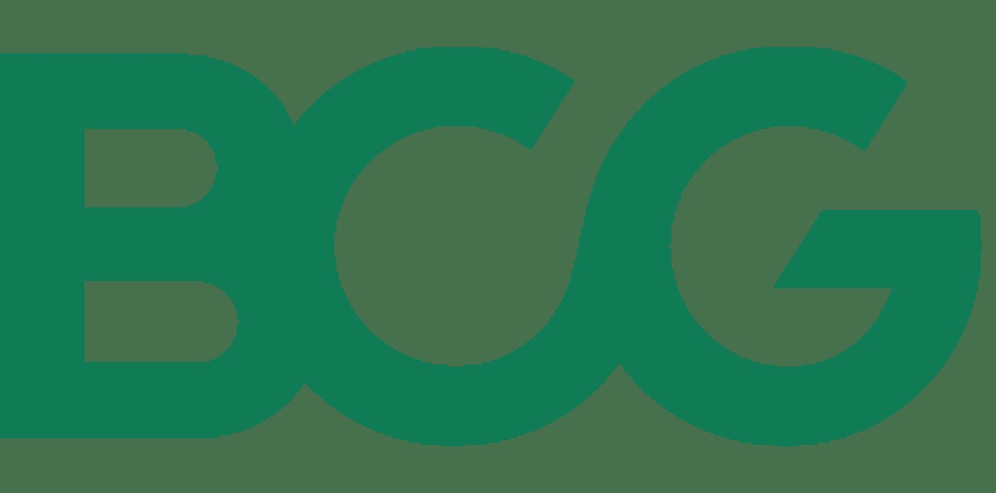 BCG-INTURN-Partner